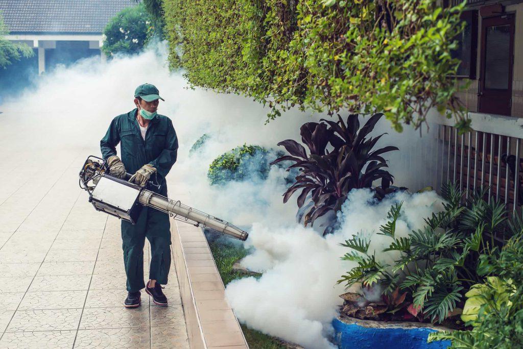 mosquito-fogging-service